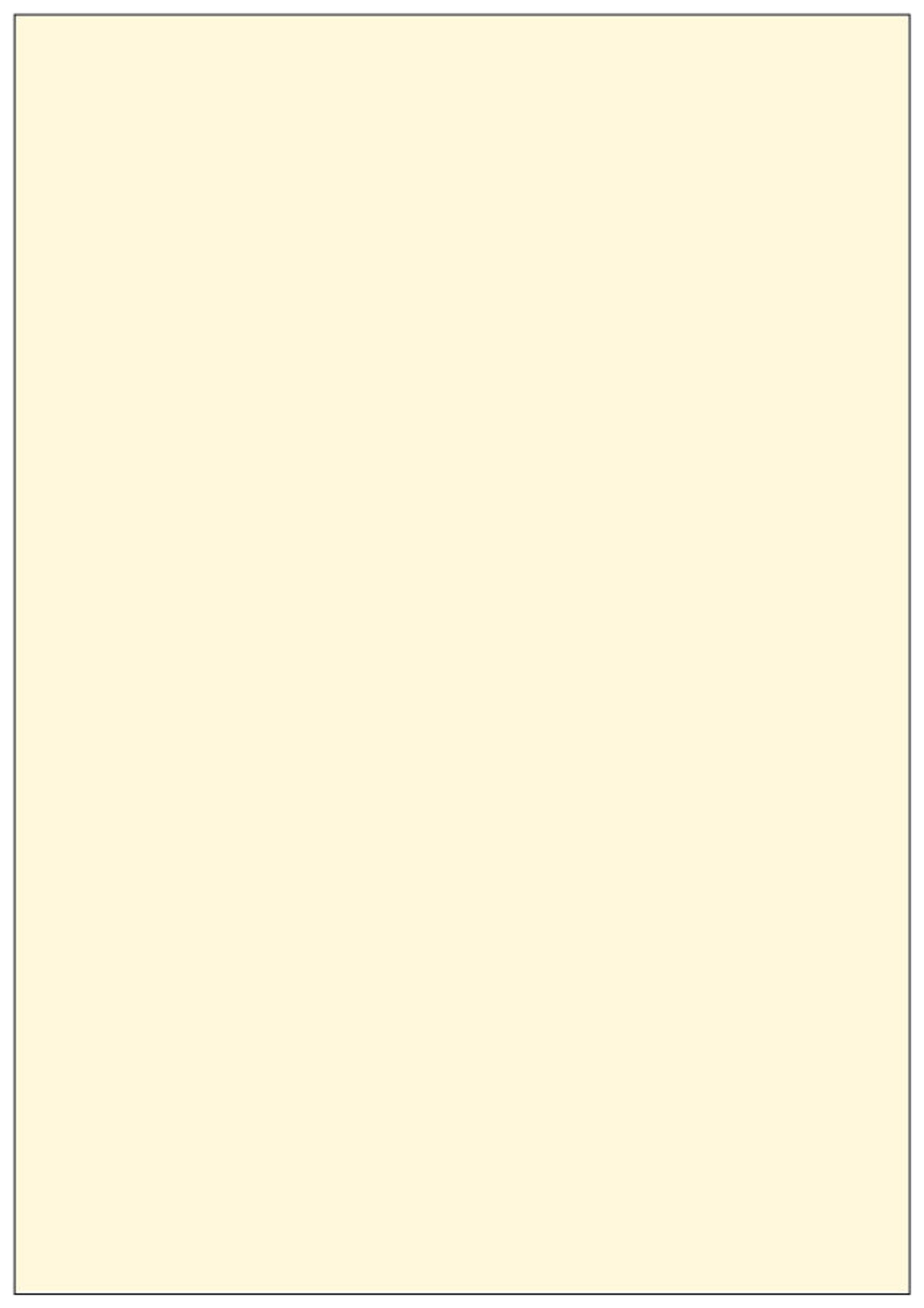 Papyrus Rainbow Pastell Kopierpapier DIN A4 farbig 120-160 g//m² Druckerpapier