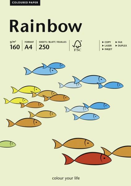 Rainbow farbiges Papier hellgrün